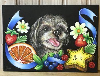 奈良チョークアート教室,ぎんのいすart works, ペット肖像画 ,チワプー  ,チョークアート