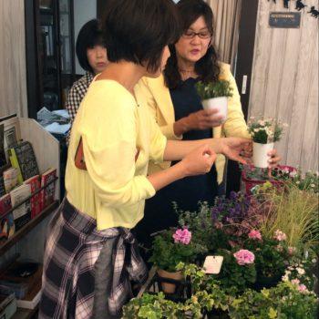 奈良・王寺・雑貨屋ぎんのいす・寄せ植え教室