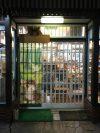 店内入れ替え雑貨セール